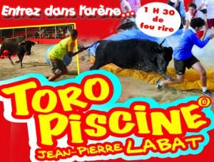 TORO-PISCINE